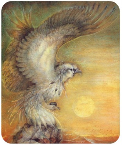 medicine-wheel-eagle-rounded